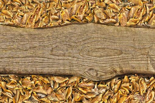 Wood, Board, Leaves, Batten, Background, Wooden Board