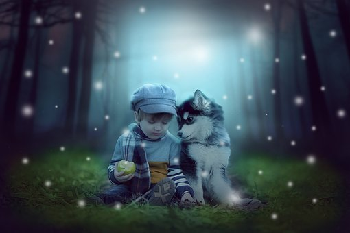 People, Nature, Baby, Mystery, Magic, Dog, Husky, Boy