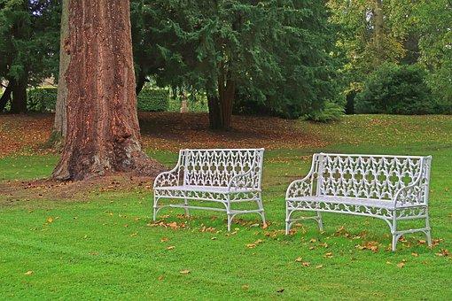 Bank, Grass, Garden, Wood, Park, Scotland, Perth