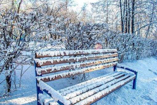 Winter, Snow, Coldly, Leann, Wood, Frozen, Nature