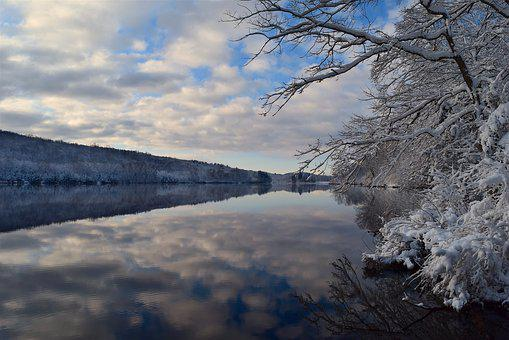 Lake, Snow, Water, Winter, Tree, Cold, Frost, Nature