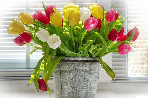 Vase, Flower, Bouquet, Pot, Ornament, Tulips