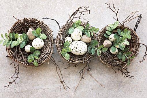 Nature, Food, Little, Desktop, Nest, Season, Eggs