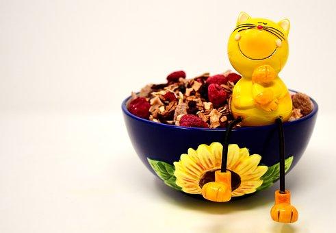 Muesli, Bowl, Cat, Figure, Sitting, Healthy, Food, Eat