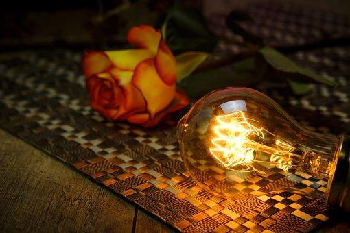 Light Bulb, Rose, Bulbs, Light, Heat, Hope, Rose Bloom