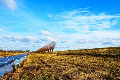 Moat, Waterway, Bank, Dike, Pollard, Willow, Tree