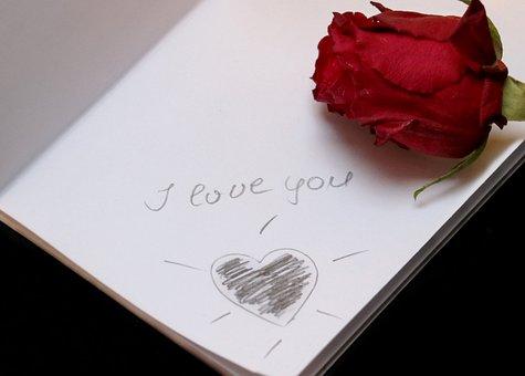 I Love You, Paper, Love, Font, Lettering, Rose
