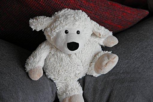 Teddy Bear, Toys, Teddy, Soft Toy, Cute, Stuffed Animal