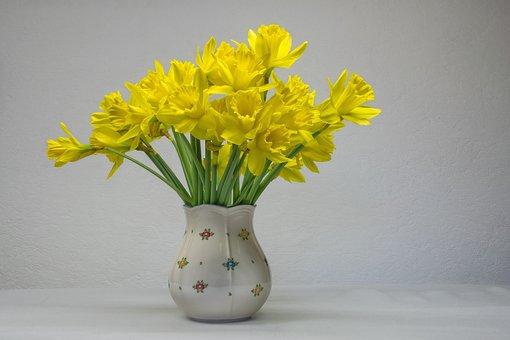 Osterglocken, Daffodils, Flower, Easter, Nature, Vase