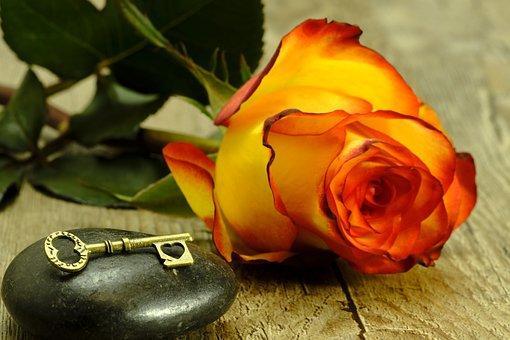 Key, Heart, Love, Rose, Romance, Romantic, Affection