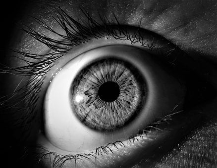 Vision, Eyeball, Eyelash, Woman, Shooting, Pupil