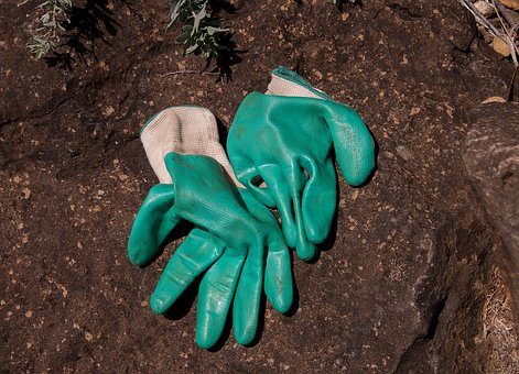 Gloves, Gardening, Protection, Hands, Clothes, Pair