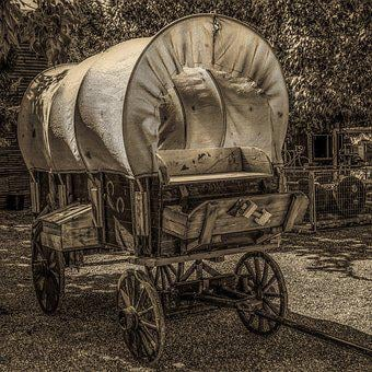 Wagon, Cart, Carriage, Transportation System, People