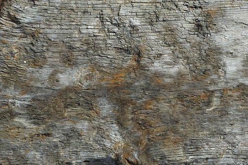 Wood-fibre Boards, Billet, Texture, Decor, Nobody