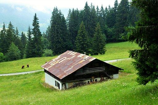 Nature, France, Alps, Haute Savoie, Chalet, Wood, Lawn