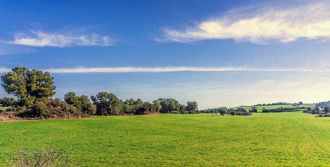 Nature, Lawn, Panoramic, Summer, Outdoors, Sky, Tree
