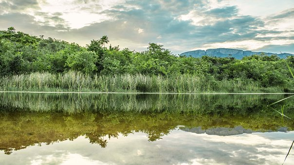 Water, Nature, Landscape, Reflection, River