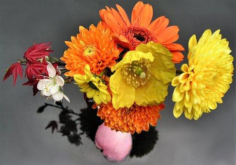 Flower, Nature, Flora, Petal, Floral, Bouquet