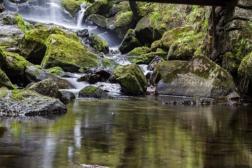 Waters, Nature, River, Rock, Waterfall, Moss Waters