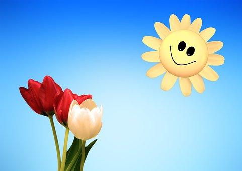 Tulips, Red, White, Smile, Sun, Smiley, Spring