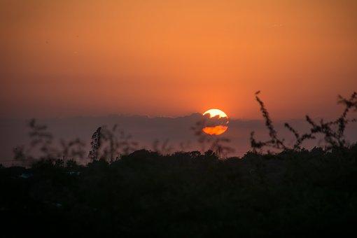 Sunset, Dawn, Silhouette, Sun, Sky, Nature, Tree