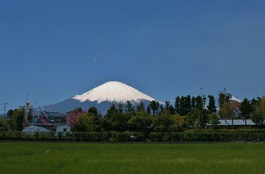 Mt Fuji, Gotemba, Satsuki, May, Carp Streamer