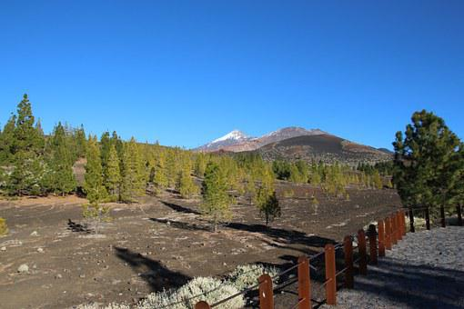 Tenerife, Teide, Volcano, Canary Islands, Nature