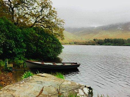 Water, Nature, Tree, Lake, River, Scenic, Landscape