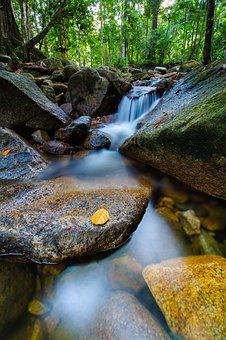 Nature, Water, Wood, River, Rock, Waterfall, Outdoors
