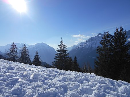 Snow, Winter, Cold, Mountain, Frost, Wood, Snowy