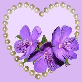 Flower, Beautiful, Bright, Nature, Decoration