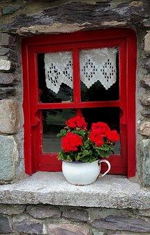 Old, Irish, Cottage, Window, Planter, Pot, Flower