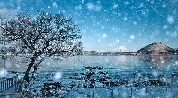 Waters, Nature, Winter, Tree, Landscape, Snow, Tourism