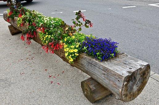 Flower, Garden, Leaf, Log, Decoration, Bouquet, Blossom
