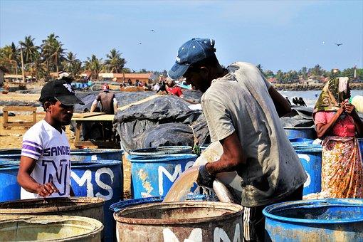 The Fishermen, Two, Barrel, Work, A Fishing Village