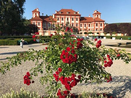 Flower, Garden, Architecture, No Person, Troja Palace