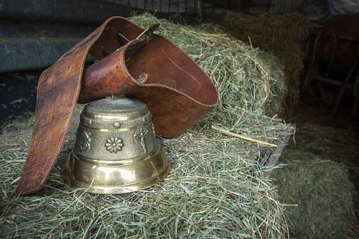 Bell, Cowboy, Golden, Pasque Flower, Clamp, Ring, Sound