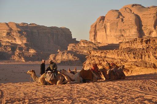 Camels, Bedouins, Wadi Rum, Jordan