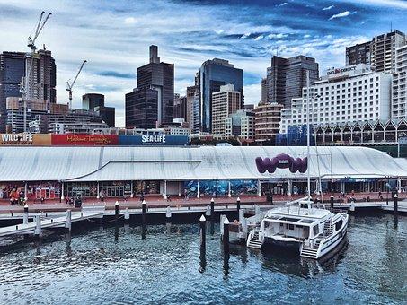Harbour, Darling Harbour, Australia, Sydney, Water