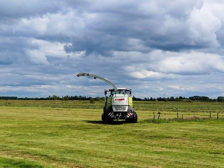 Meadow, Agriculture, Landscape, Nature, Lawnmowers