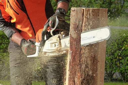 Wood, Chainsaw, Tree, Artwork, Sculpture, Cases