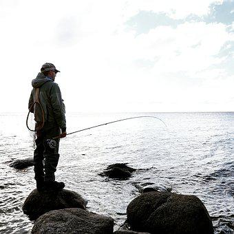 Flyfishing, Fishing, Fisherman, Fly-fishing, Man, Fish