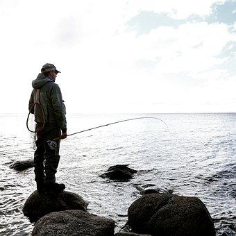 Flyfishing, Fishing, Fisherman, Fly-fishing, Man, Fish