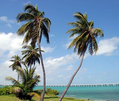 Bahia Honda, State Park, Park, Florida, Water, Ocean