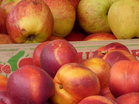 Apples, Nectarines, Apple, Fruit, Green Food, Nature