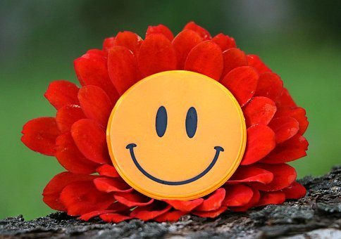 Smile, Joy, Flower, Laughter, Mood, Happiness, Delight