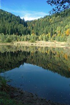 Sankenbachsee, Lake, Waldsee, Baiersbronn, Black Forest