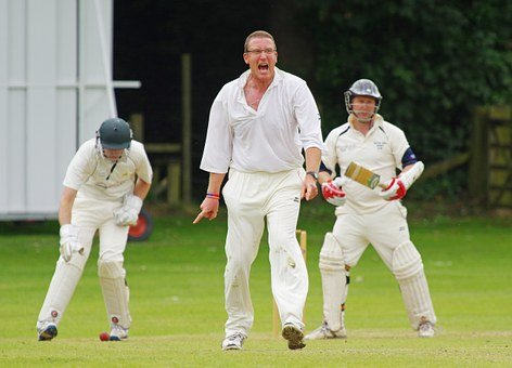Cricket, Bowler, Howzat, Out, Competition, Cricketer