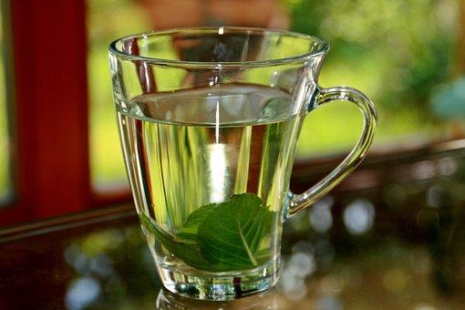 Peppermint Tea, Tee, Mint Tea, Peppermint, Hot, Cup