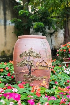 Potted, Pot, Flower, Antonio, San, Plant, Gardening